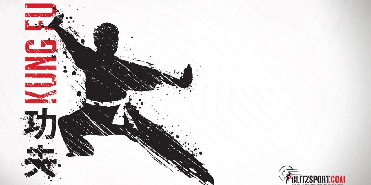 Kung Fu Wallpaper Wallpapers Hd Epic Wallpaperz Gassho